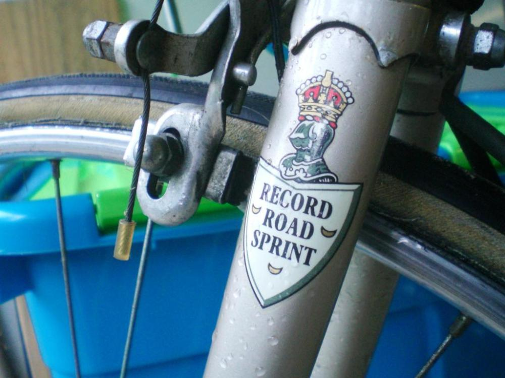 Knight's head and shield Record Road Sprint model Transfer (2)